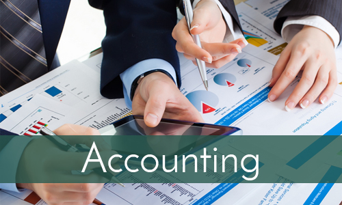 accounting-toggle